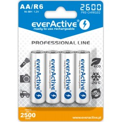 Akumulatorek everActive...